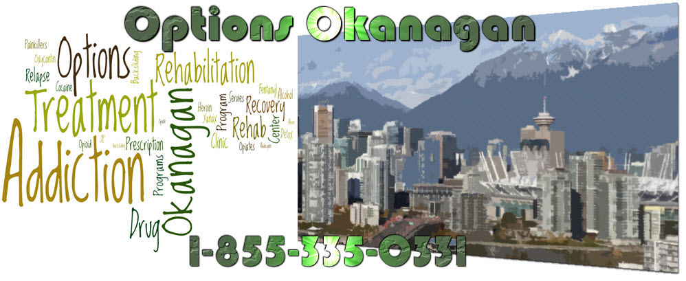 NA and NA Group Meetings on Drugs - Frequently Asked Questions – Vancouver, British Columbia - Options Okanagan Treatment Center for OxyContin Addiction