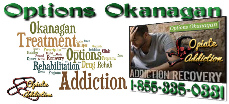 NA and Group Meetings on Drugs - Frequently Asked Questions – Vancouver, British Columbia - Options Okanagan Treatment Center for Drug Addiction